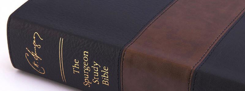 christian study bibles
